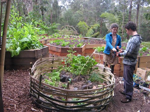 Permaculture Meets Creative Design Weekend - Dynamic ... on Backyard Permaculture Design id=61252