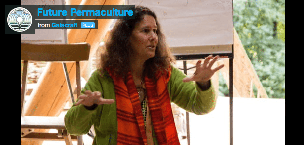 Future-Permaculture