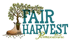 Fairharvest's logo